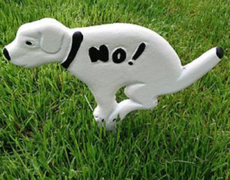 Zīme sunim